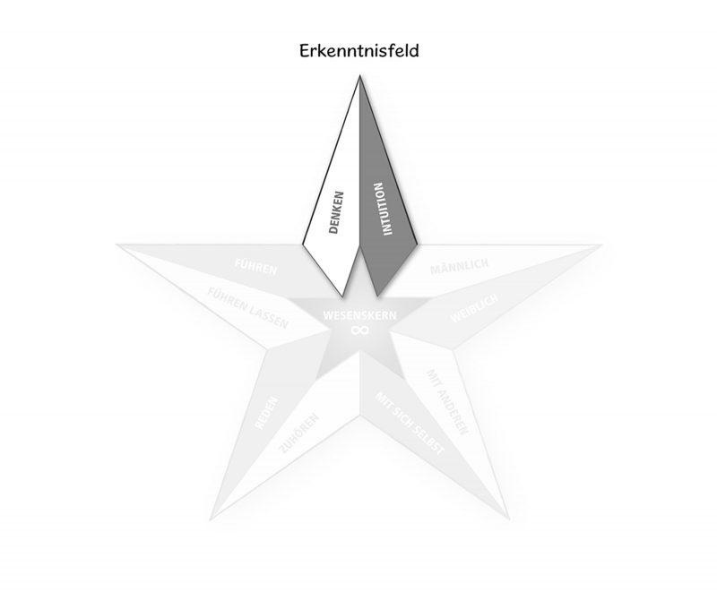 Persönlichkeitspentagramm Erkenntnisfeld