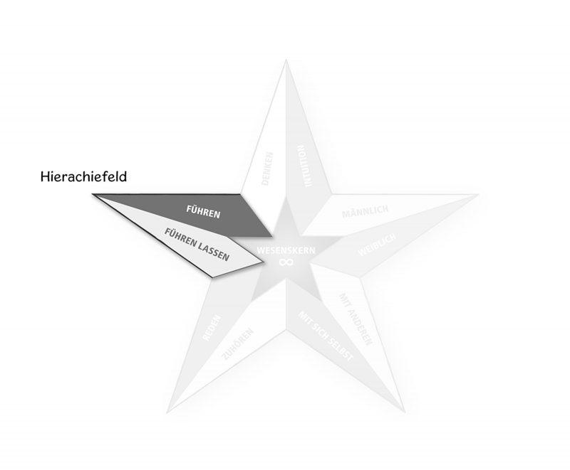 Persönlichkeitspentagramm Hierachiefeld